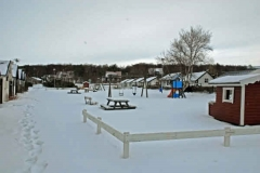 februari 2010 154